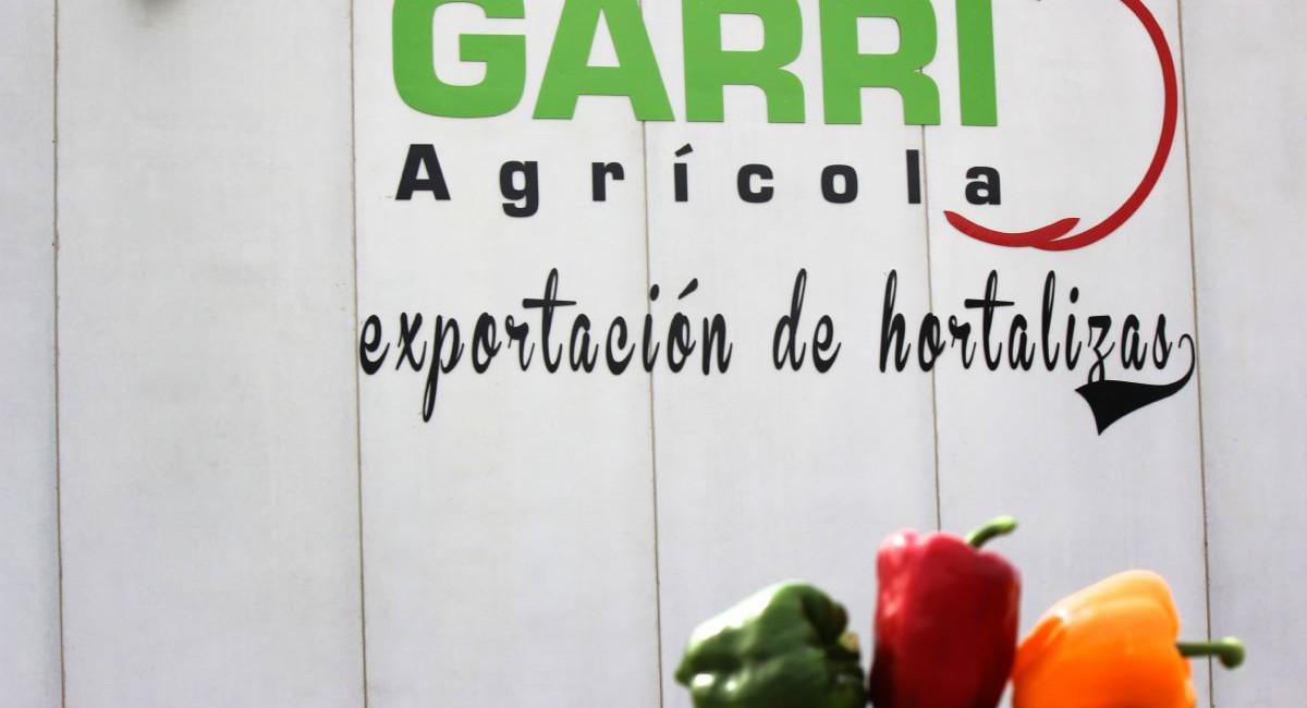 Garri Agrícola09