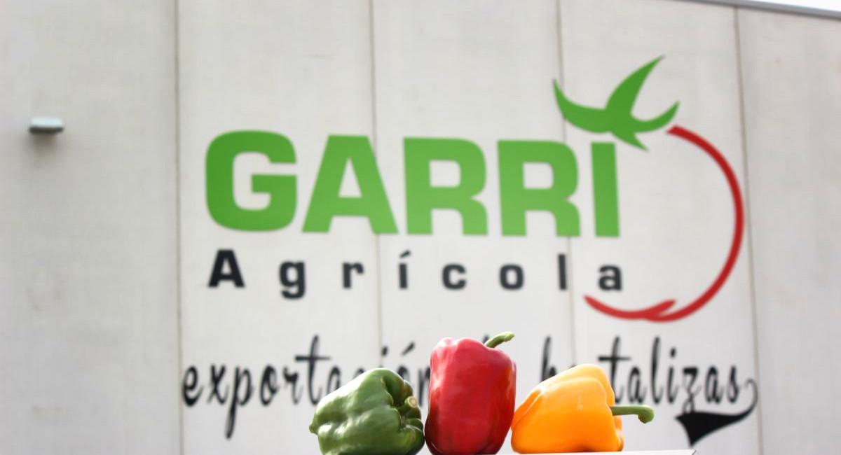Garri Agrícola10