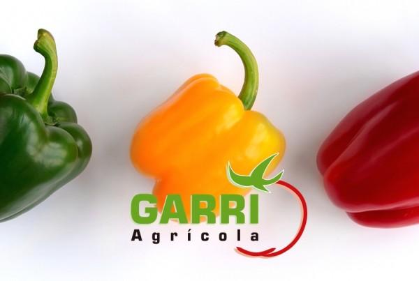 pimiento tricolor garri